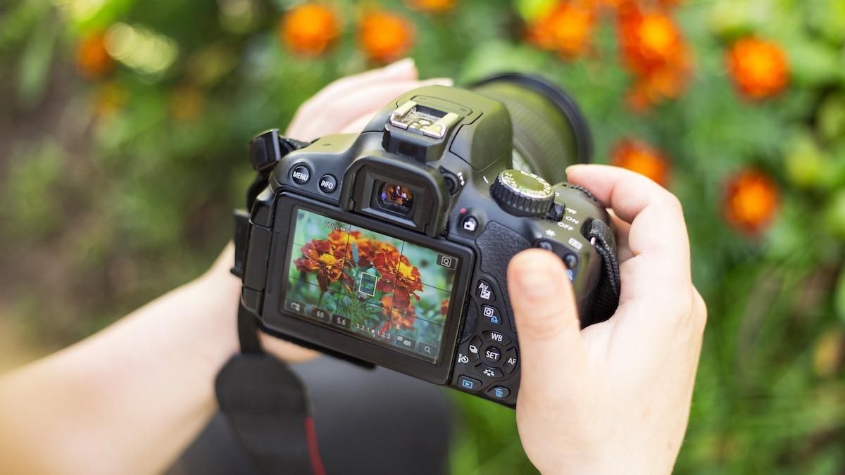 Comment faire la mise au point de votre appareil photo pour des images nettes