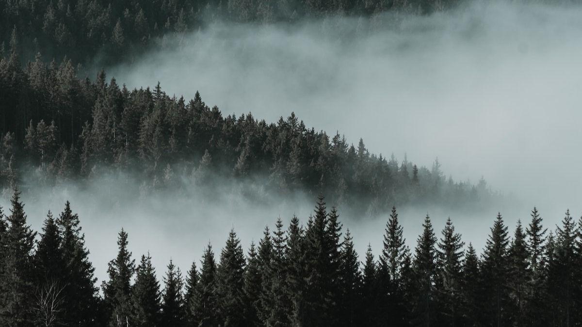 6 tipov na dychberúcu fotografiu prírody