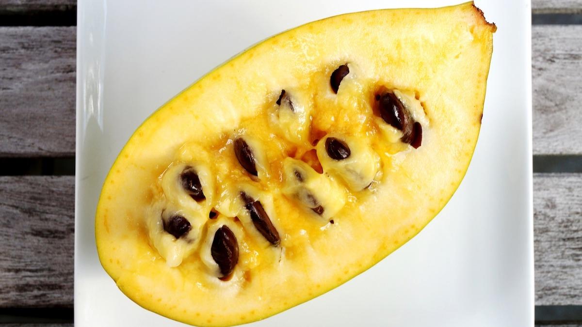 Cos'è il frutto di papaia? Come fare il pane di papaia
