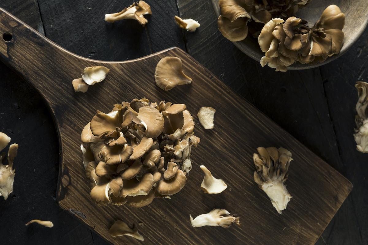 Comment cuisiner avec des champignons Hen of the Woods