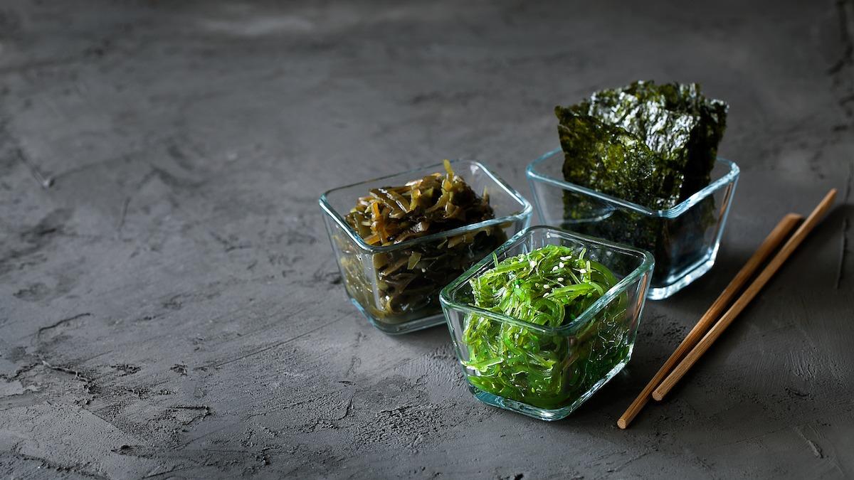 Cos'è l'alga commestibile? 7 tipi di alghe e 4 ricette di alghe