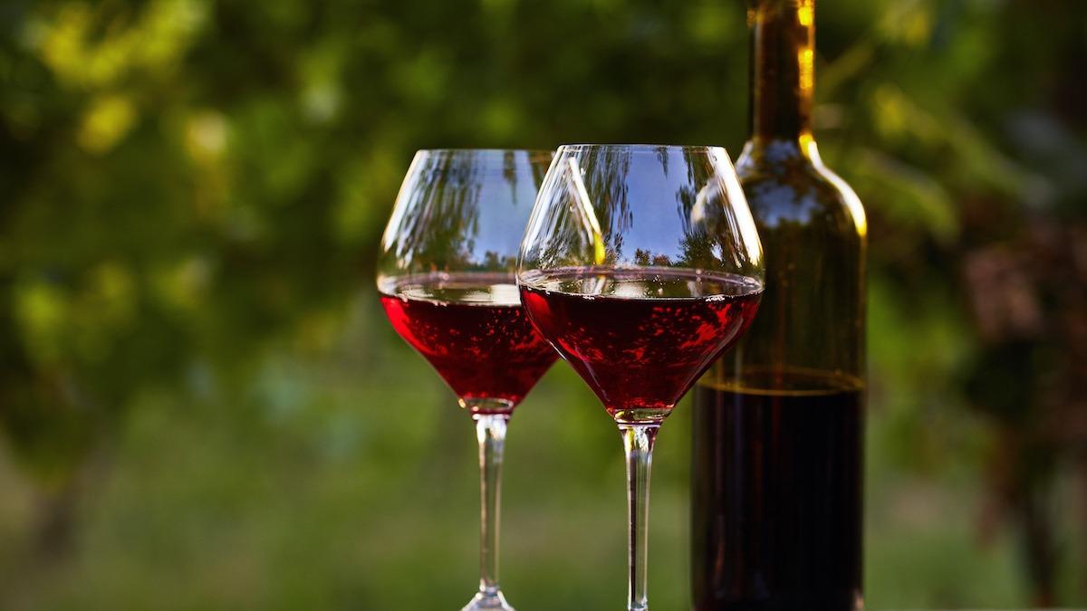 Francusko vino: Vodič za vinsku regiju Burgundija u Francuskoj