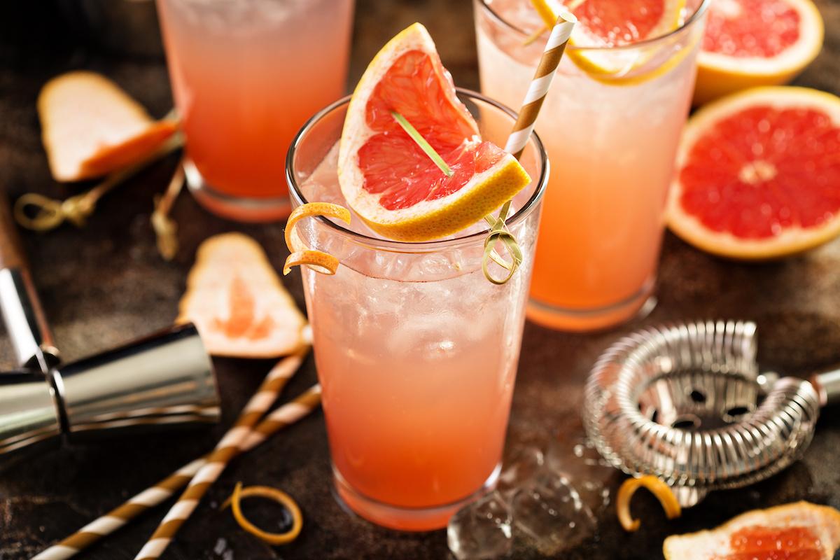 Klasičen recept za koktajle iz hrtov z vodko ali ginom