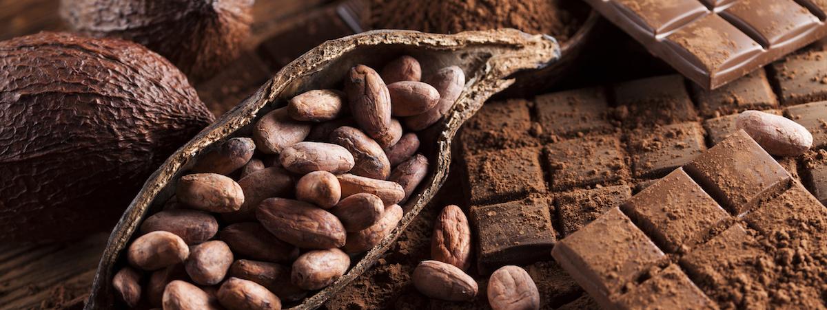 Aký je rozdiel medzi kakaom a kakaom? Plus 9 nápadov na recept