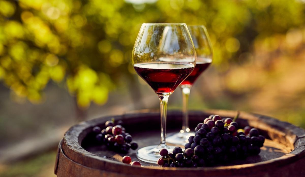 Qu'est-ce qu'un vin super toscan ? En savoir plus sur l'histoire unique de ce vin rouge italien