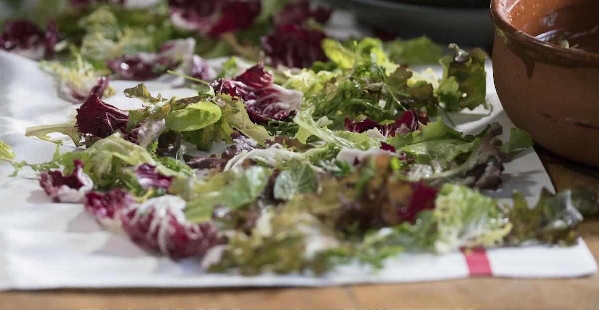 Matlagning 101: Vad är Mesclun? Lär dig mer om egenskaperna hos Mesclun och Alice Waters Mesclun Salad Recept