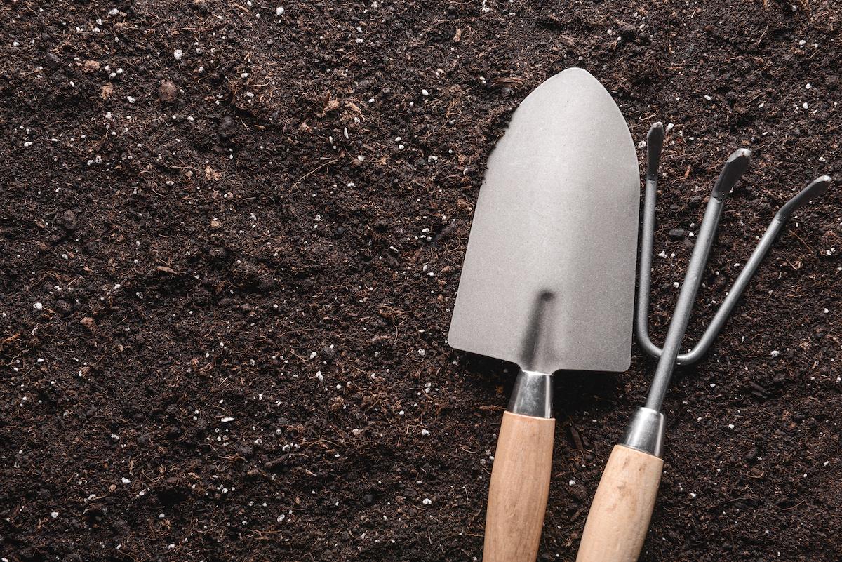 Guida essenziale alla guida al pH del suolo: 3 modi per testare il pH del suolo