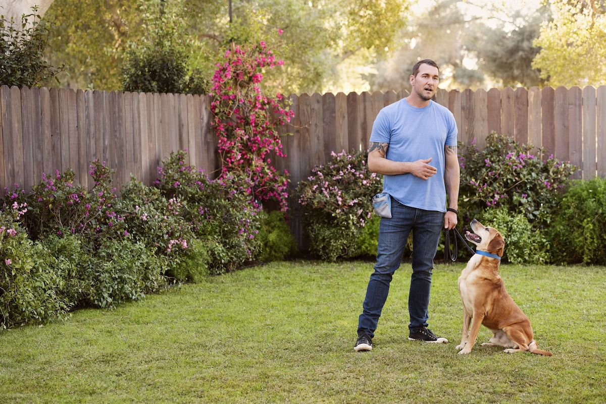 Brandon McMillan partage 6 façons de tenir une laisse de chien