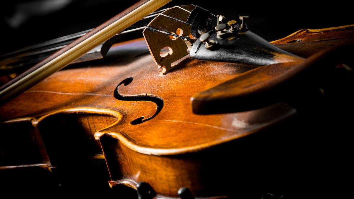 Koji su različiti dijelovi violine i kako djeluju? Saznajte više o 20 ključnih komponenti violine